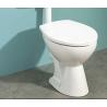 Fijación inoxidable A2 vertical de taza WC  y bidet XFWC